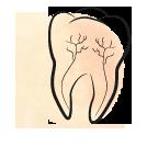 Leczenie kanałowe – endodoncja